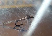 Montage d'une Araignée