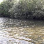 Redécouverte d'une rivière